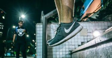 Chaussure Pegasus Nike